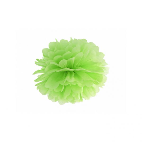 1 Pompom - Ø 25cm - Hellgrün
