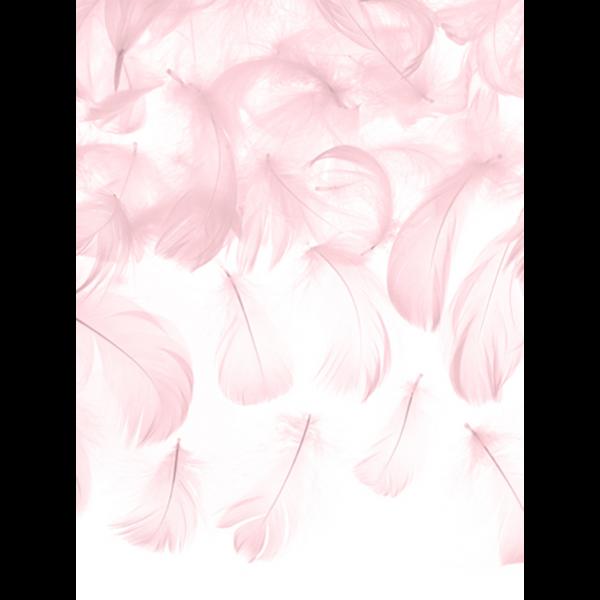 3g Dekofedern - Rosa