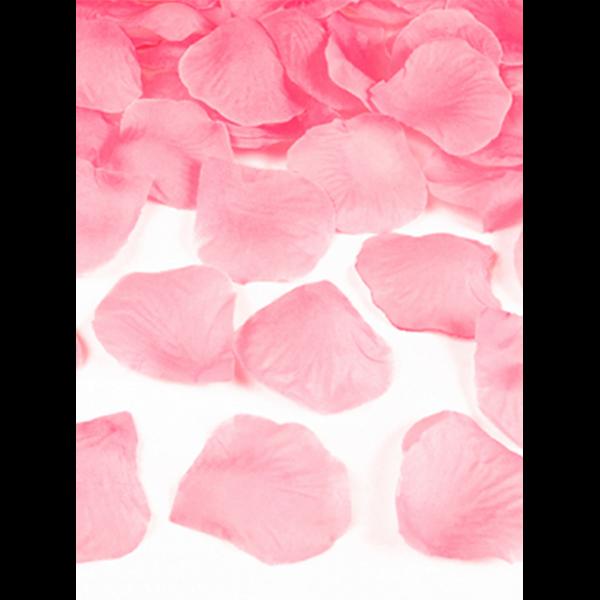 500 Rosenblätter - Rosa
