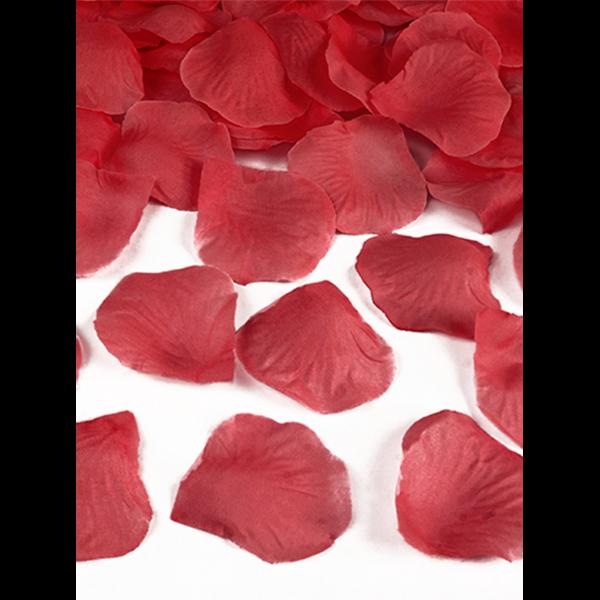 500-Rosenblaetter-Rot